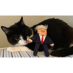 Donald Catnip Cat Toy