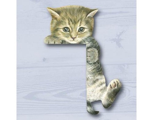 Climbing Kitten Doorframe Cat