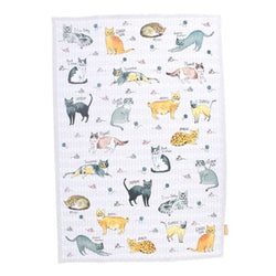 Curious Cats Tea Towel Pack of 2