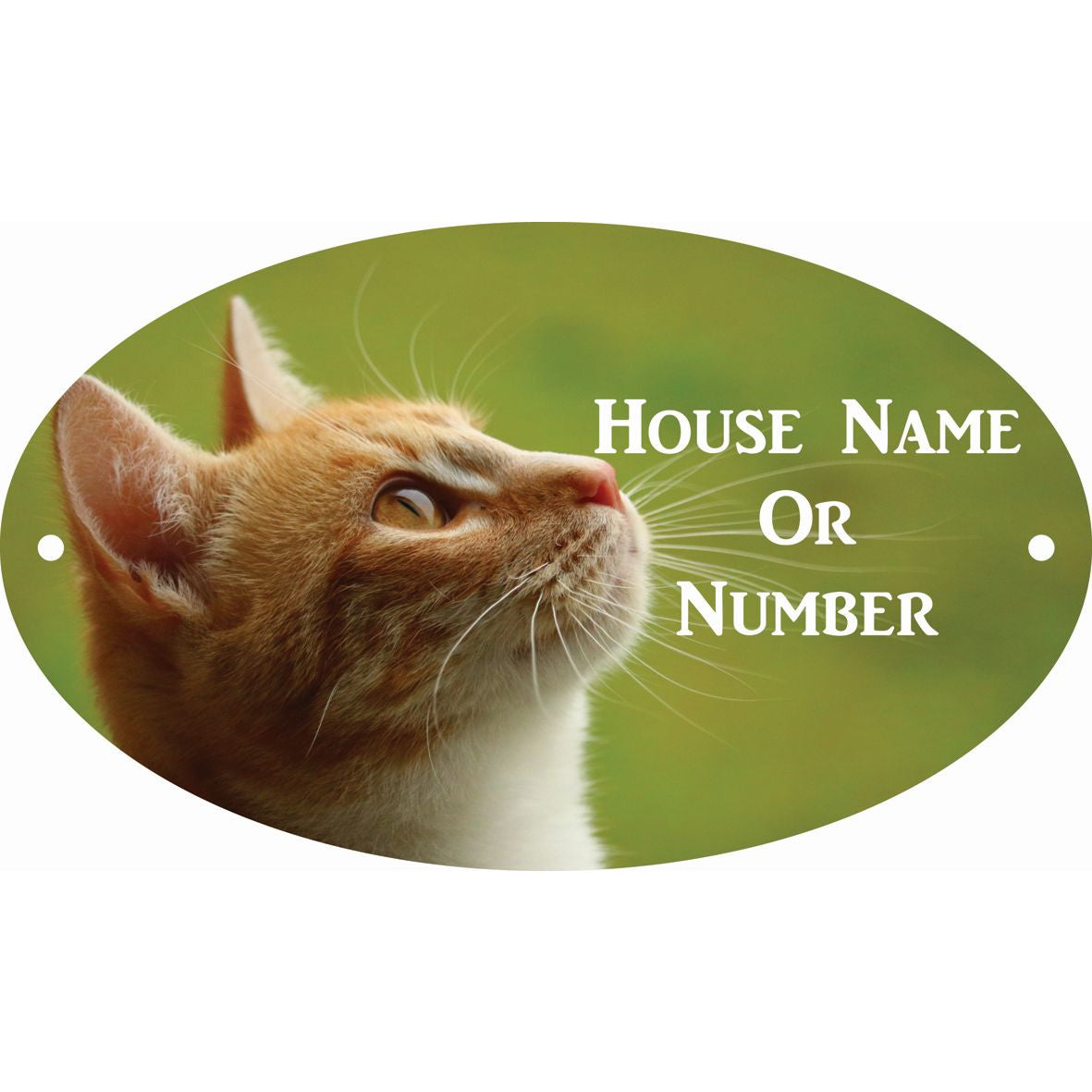 Photographic Personalised House Sign......... (Click to Select the Design You Require)
