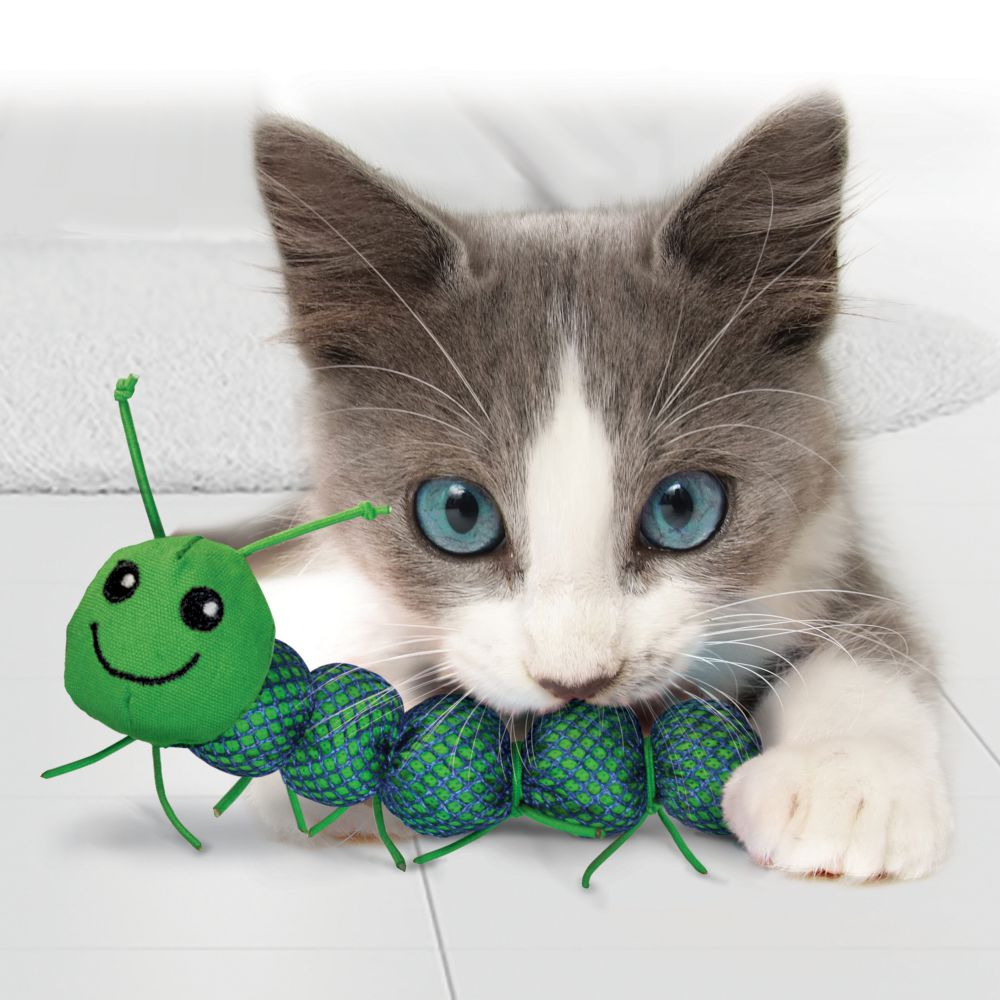 KONG Catnipillar - lifestyle cat being chewed by a cat