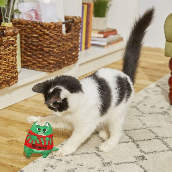 Refillable Catnip Cat Toy, Naughty