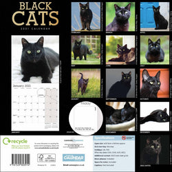 50% OFF Black Cats 2021 Wall Calendar