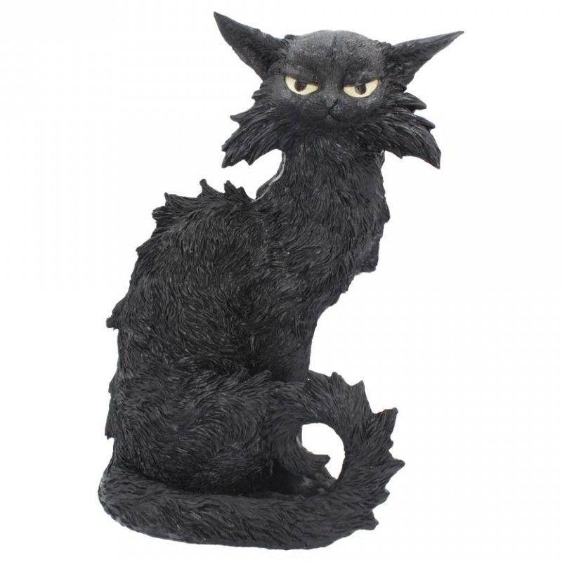 Salem Black Cat