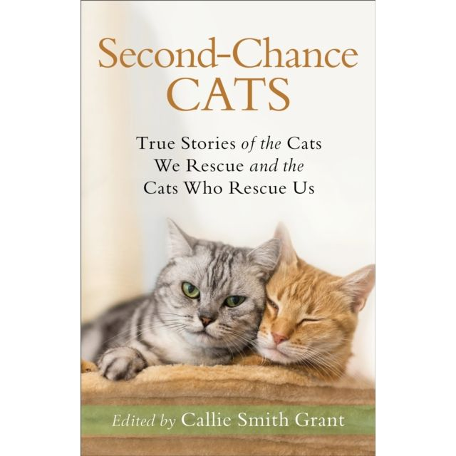 Second Chance Cats