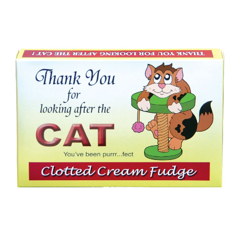 Thank you for looking after the cat fudge