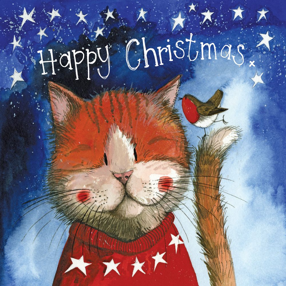 Christmas Jumper Christmas Card Pack