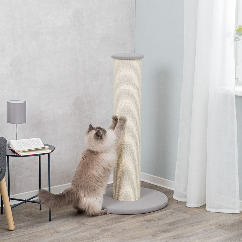 XXL Scratching Post - Ideal for Large Cats