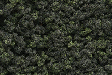 Load image into Gallery viewer, Woodland Scenics FC139 Underbrush Clump Foliage Forest Blend