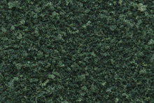 Load image into Gallery viewer, Woodland Scenics T65 Turf Coarse Dark Green 12 oz