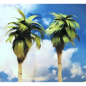 Grand Central Gems 2 Medium Palm Trees 295T25