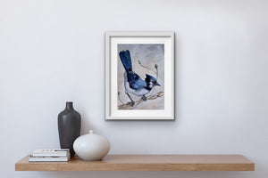 Blue Jay High Gloss A4 Print