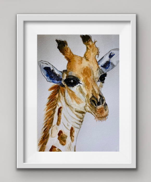 Singapore Zoo Giraffe High Gloss A4 Print