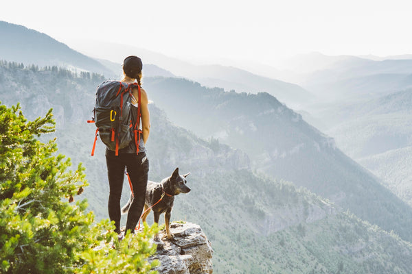 Hiking with dogs in Montana Roverlund
