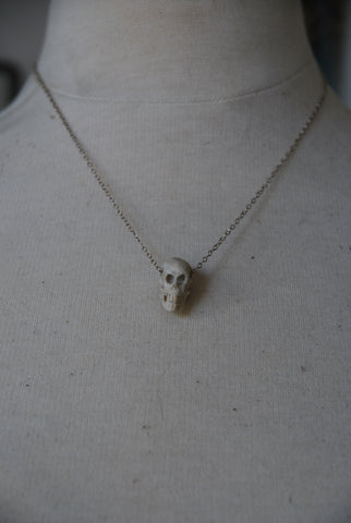 Carved Bone Skull
