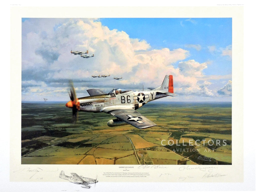 Collectors aviation art American Eagle