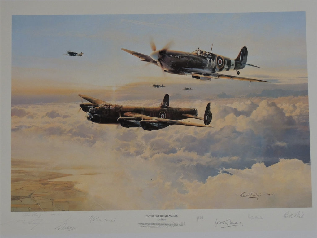 Escort for the Straggler by Robert Taylor - RAF AP editions