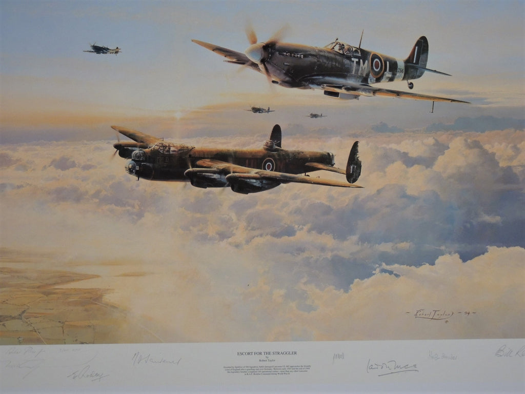 Escort for the Straggler by Robert Taylor - RAF & ANZAC AP editions
