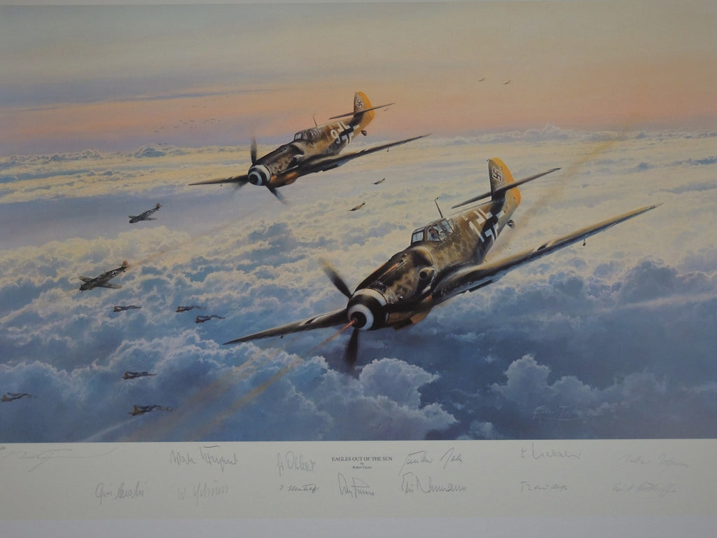 Eagles Out of the Sun by Robert Taylor