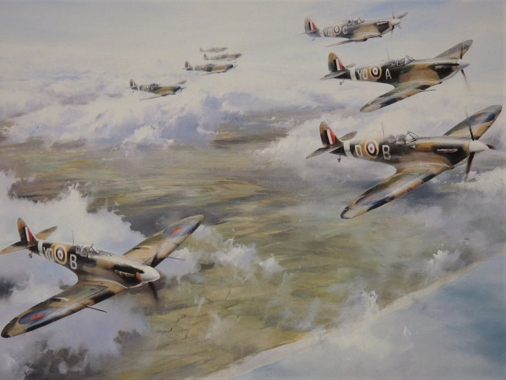 Tangmere Wing by Robert Taylor