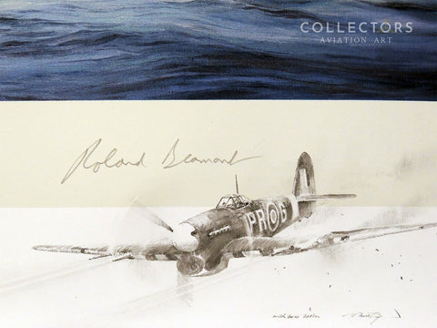 Collectors aviation art Typhoon Attack