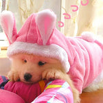 Hot Easter Bunny Puppy Costume