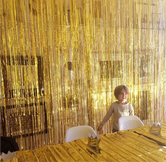 Backdrop Foil Curtain Tassel