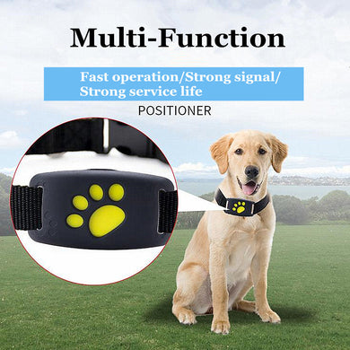 Dog Tracker Multi Function Waterproof GPS Collar Locator USB Recharge