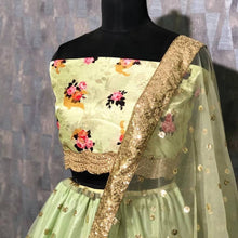 Light Green Lehenga Heavy Soft Net