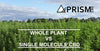 Whole Plant vs. Single Molecule CBD