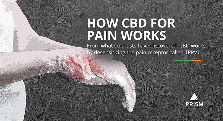 How CBD for pain works