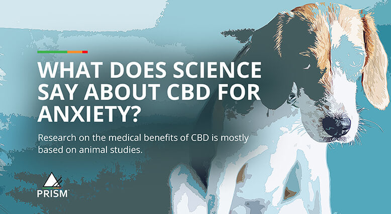 What does science say about CBD for anxiety?