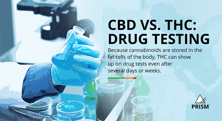 CBD vs. THC: drug testing