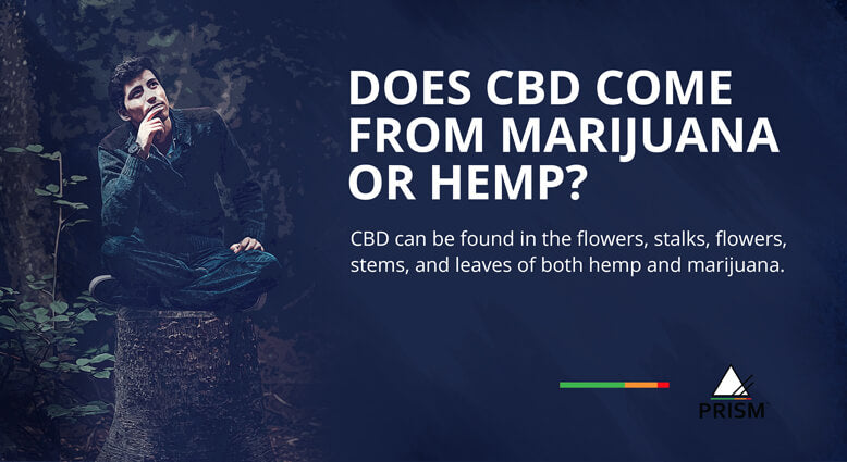 Does CBD come from marijuana or hemp?