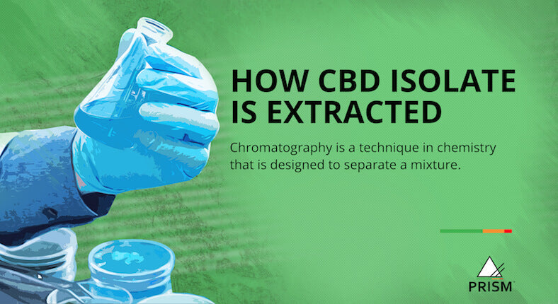 How CBD isolate is extracted