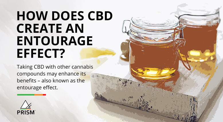 How does CBD create an entourage effect?