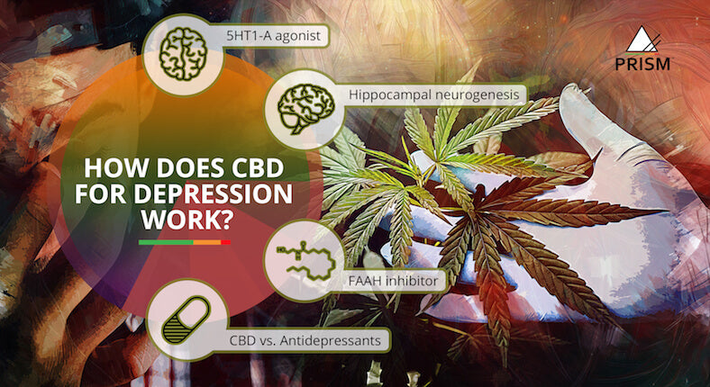 How does CBD for depression work?