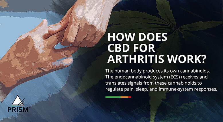 How does CBD for arthritis work