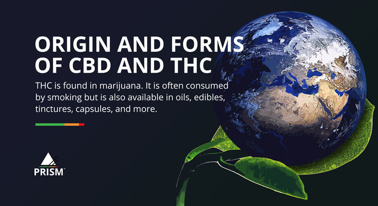 Origin and forms of CBD and THC