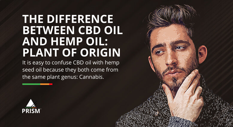 The difference between CBD oil and hemp oil: plant of origin