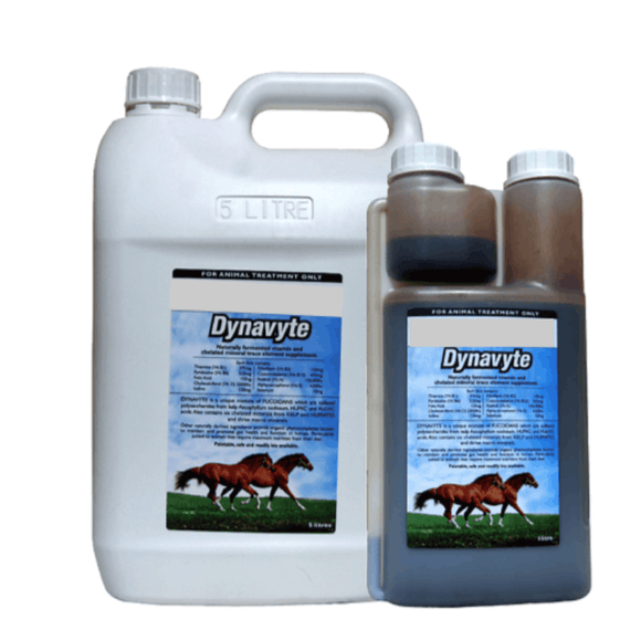 Dynavyte Microbiome Equine Health Supplements