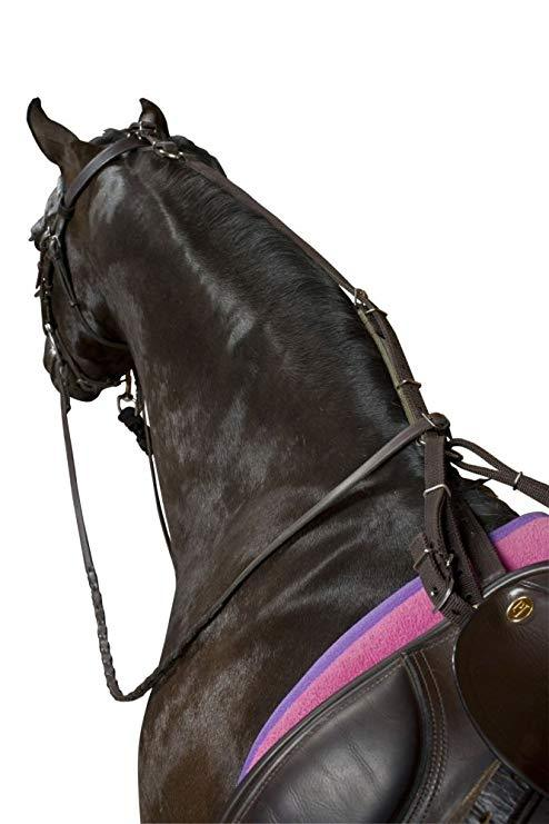 Kincade Poly Anti-Grazing Strap Bridle Accessories