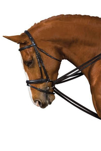 Kincade Web Draw Rein Set Training Aids - Breastplates, Martingales, Running Reins etc.