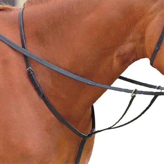 Leather Running Martingale Training Aids - Breastplates, Martingales, Running Reins etc.