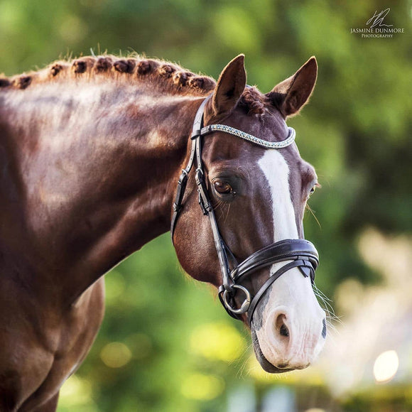 Lumiere 'Anastasia' Italian Leather Bridle - Brown Bridles