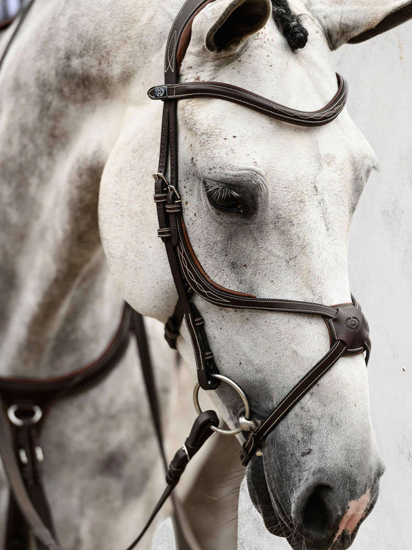 PS of Sweden Athens Bridle Bridles