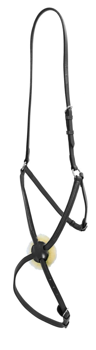 Platinum Grakel Noseband Only Bridle Accessories