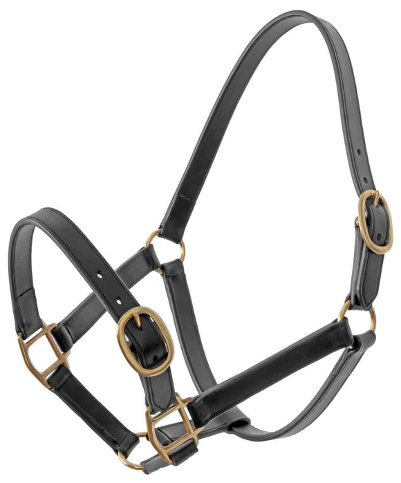 Platinum Leather Halter - Buckle on Nose Halters and Leads