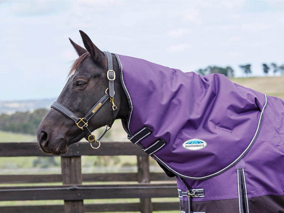Weatherbeeta Comfitec Plus Dynamic Neck Rug Medium/Lite Spring/Autumn Covers
