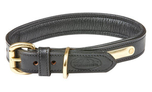 Weatherbeeta Padded Leather Dog Collar Dog Collars and Leads